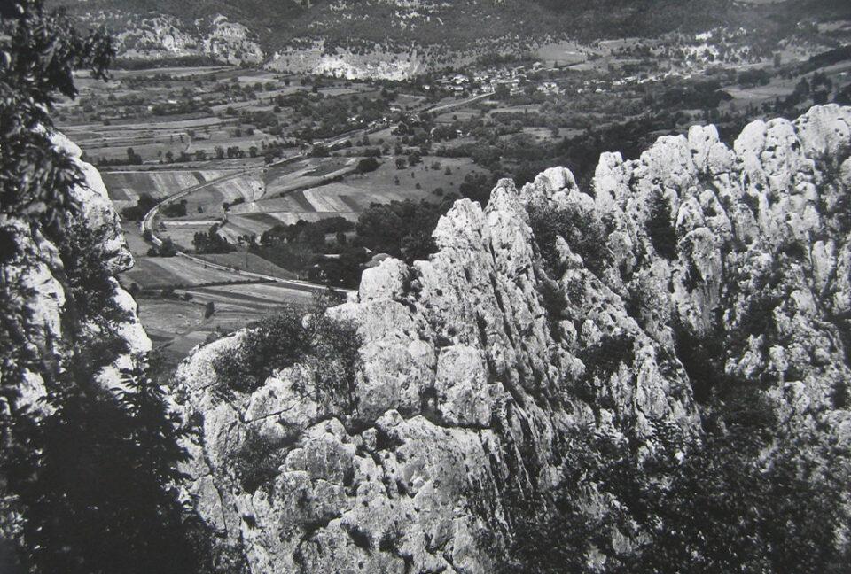 Палилула 2001
